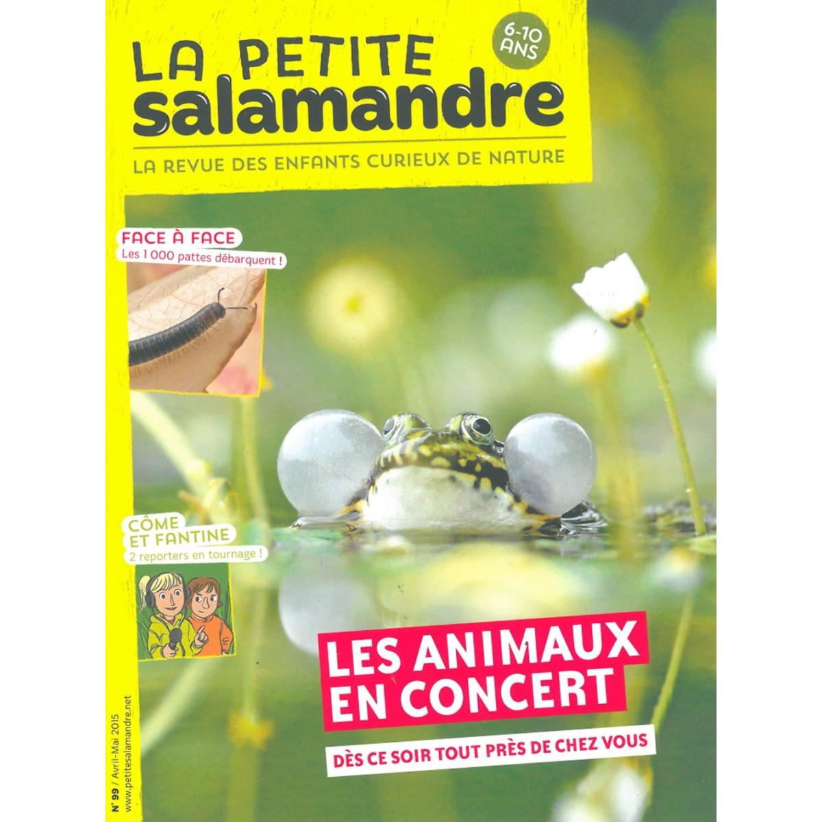 Salamandre cuisine pas cher fabulous salamandre - Salamandre cuisine occasion ...
