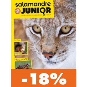 La Salamandre Junior